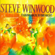 Steve Winwood, There's A River